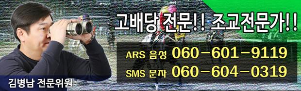 김병남 전문위원